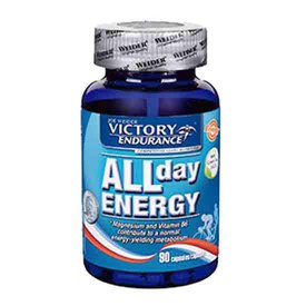 Victory endurance All Day Energy 90 Units Without Flavour